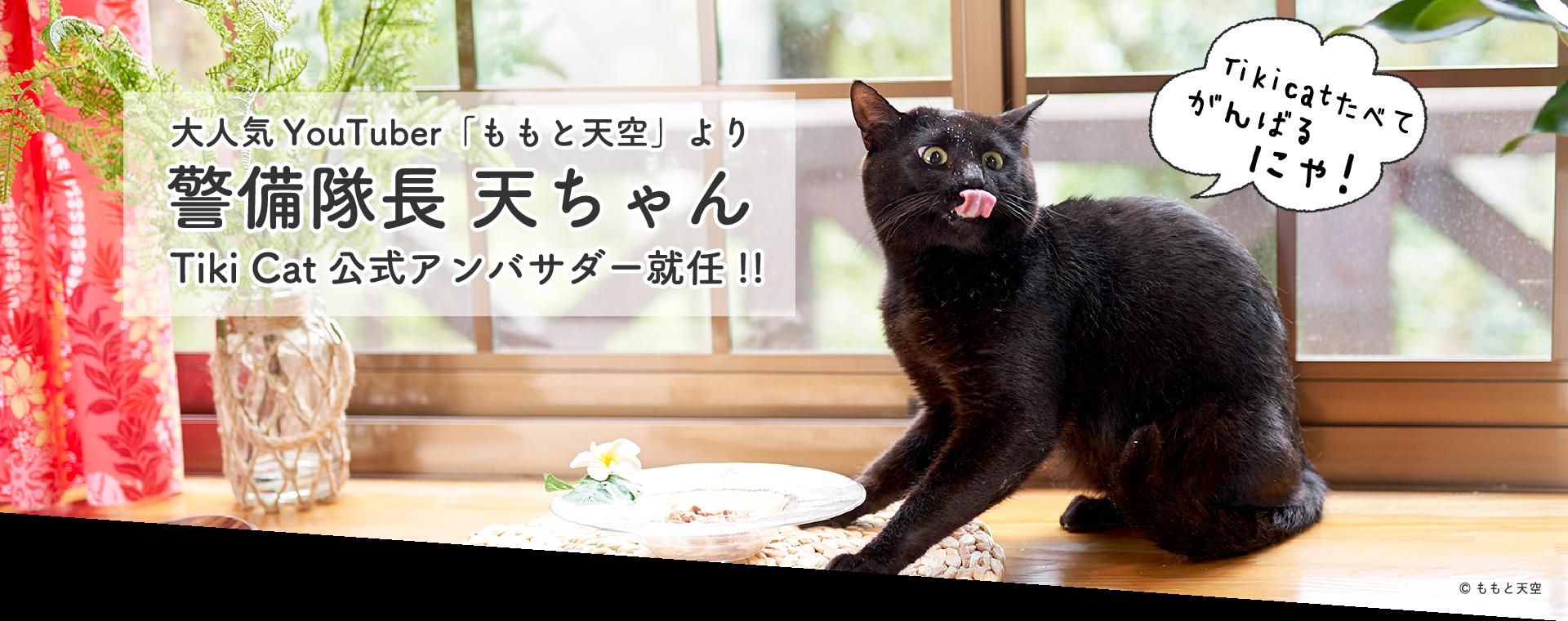 「ももと天空」の警備隊長天ちゃん、Tiki Cat公式アンバサダーに就任